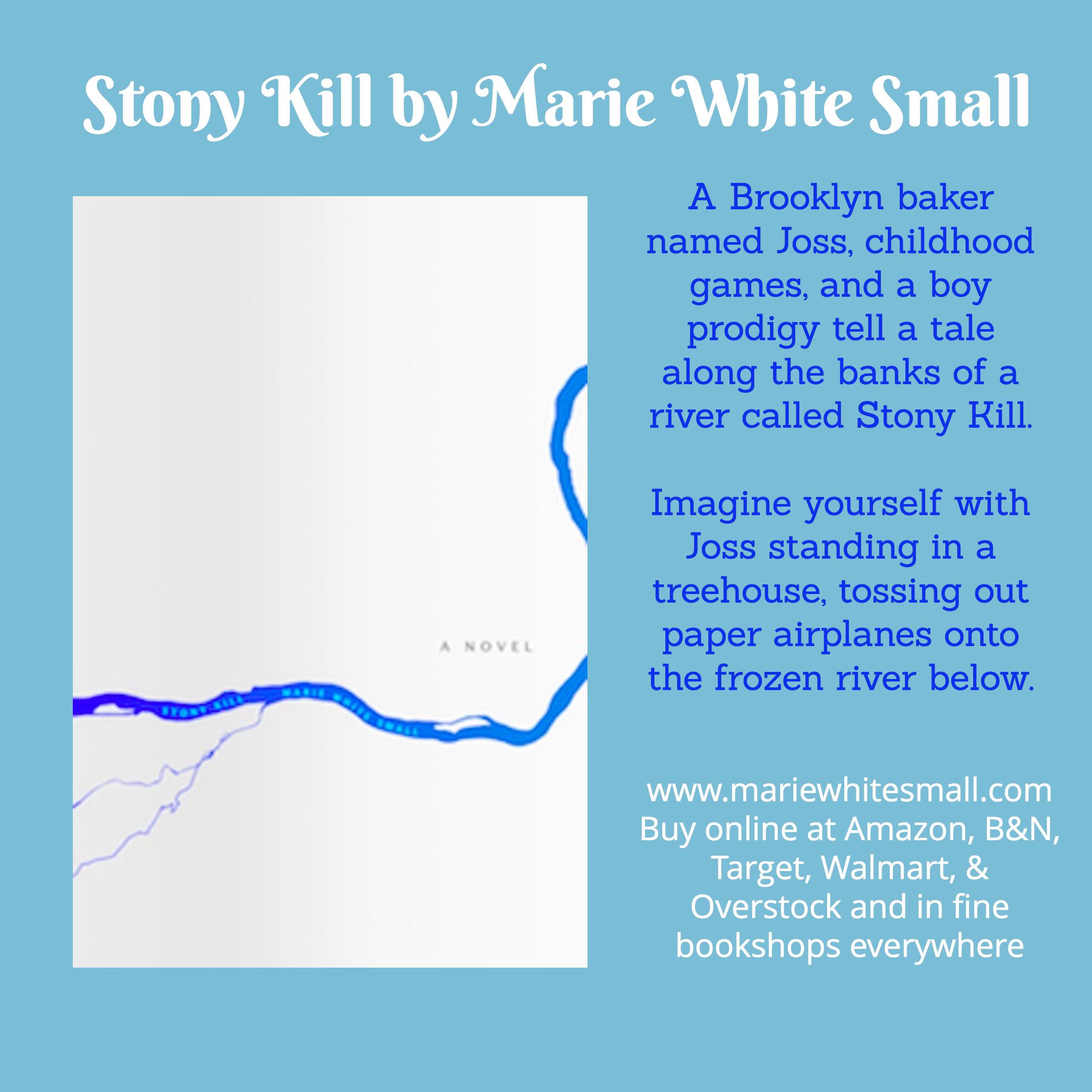 Ebook Stony Kill By Marie White Small