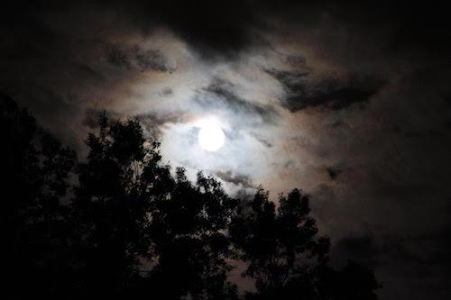 moon pic 1